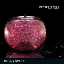 crackled glass apple sculpture - transparencies